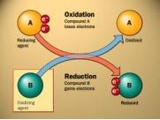 Pengertian Oksidasi